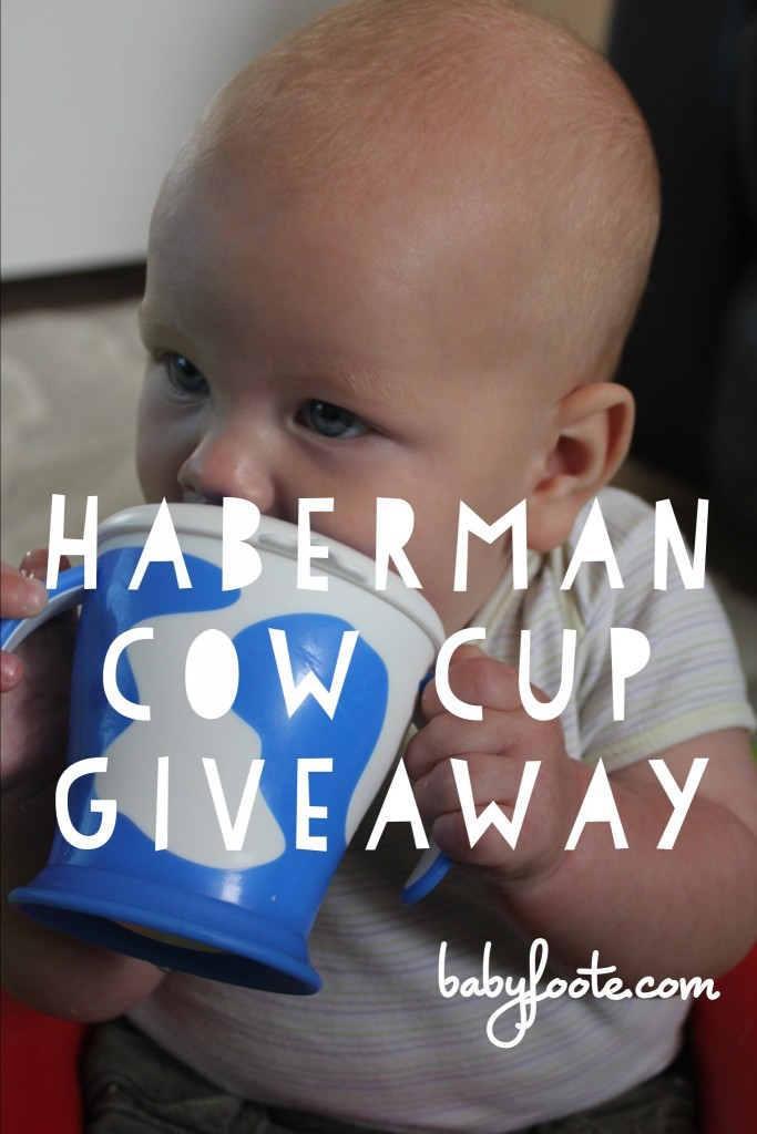 Haberman Cow Cup – review and giveaway