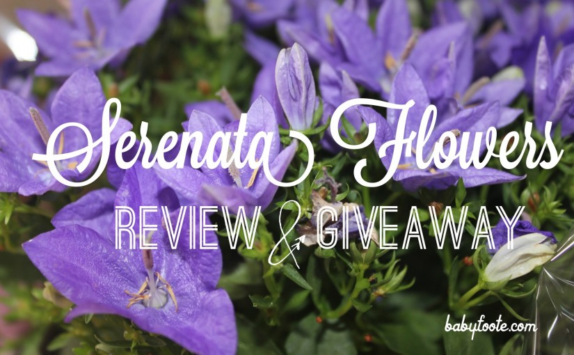 Serenata flowers review giveaway