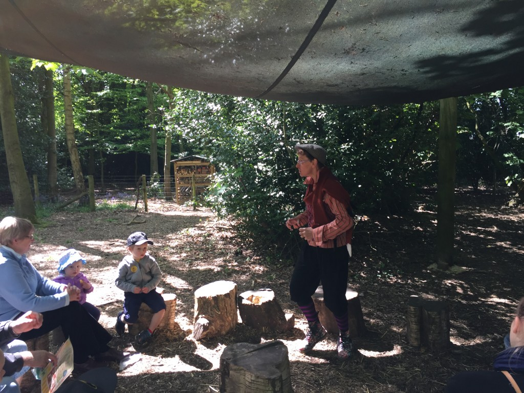 Story teller at fantastic mr fox Roald Dahl centenary celebrations at Tatton park farm