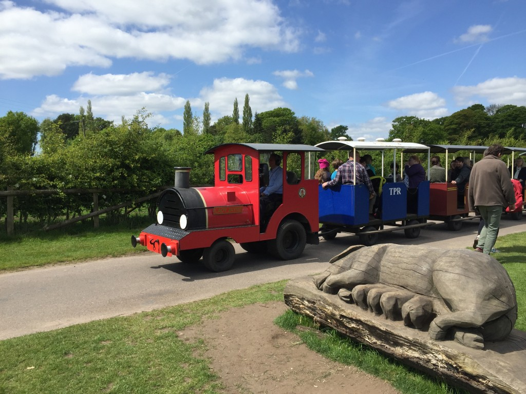 Tatton park railway land train