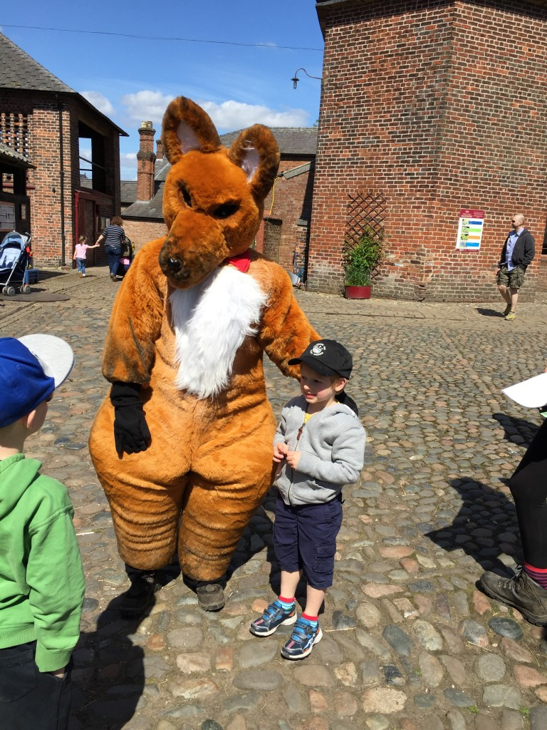 Fantastic mr Fox at Tatton Park as part of their Roald Dahl Centenary celebrations