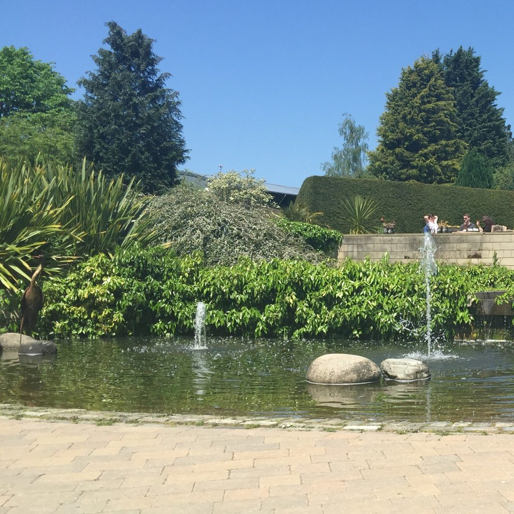 A day out with toddlers at Durham university botanic garden