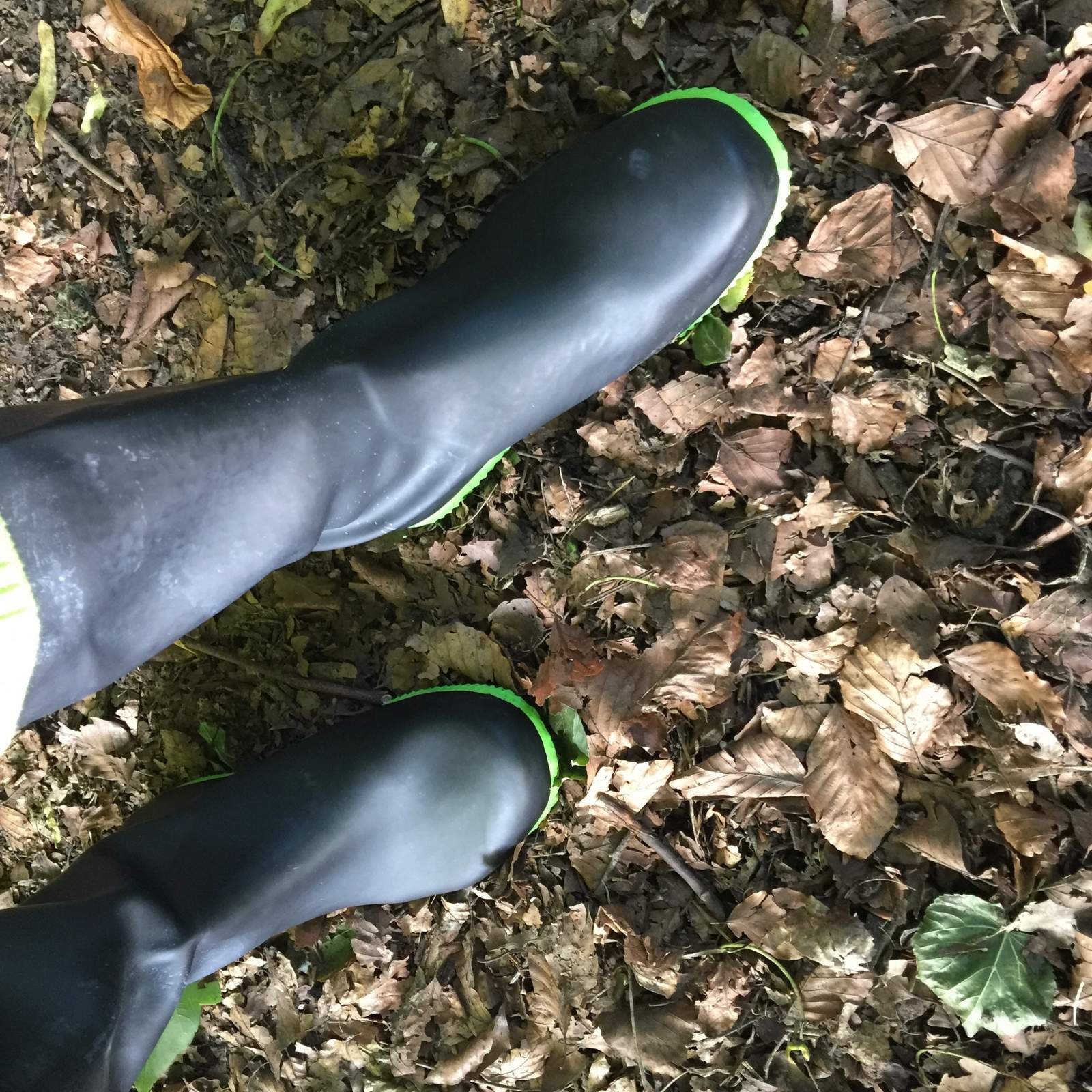 butterfly twists black and lime wellies