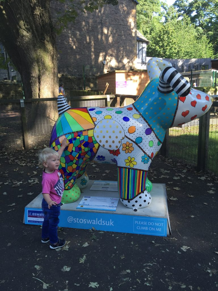 jesmond dene great north snowdog