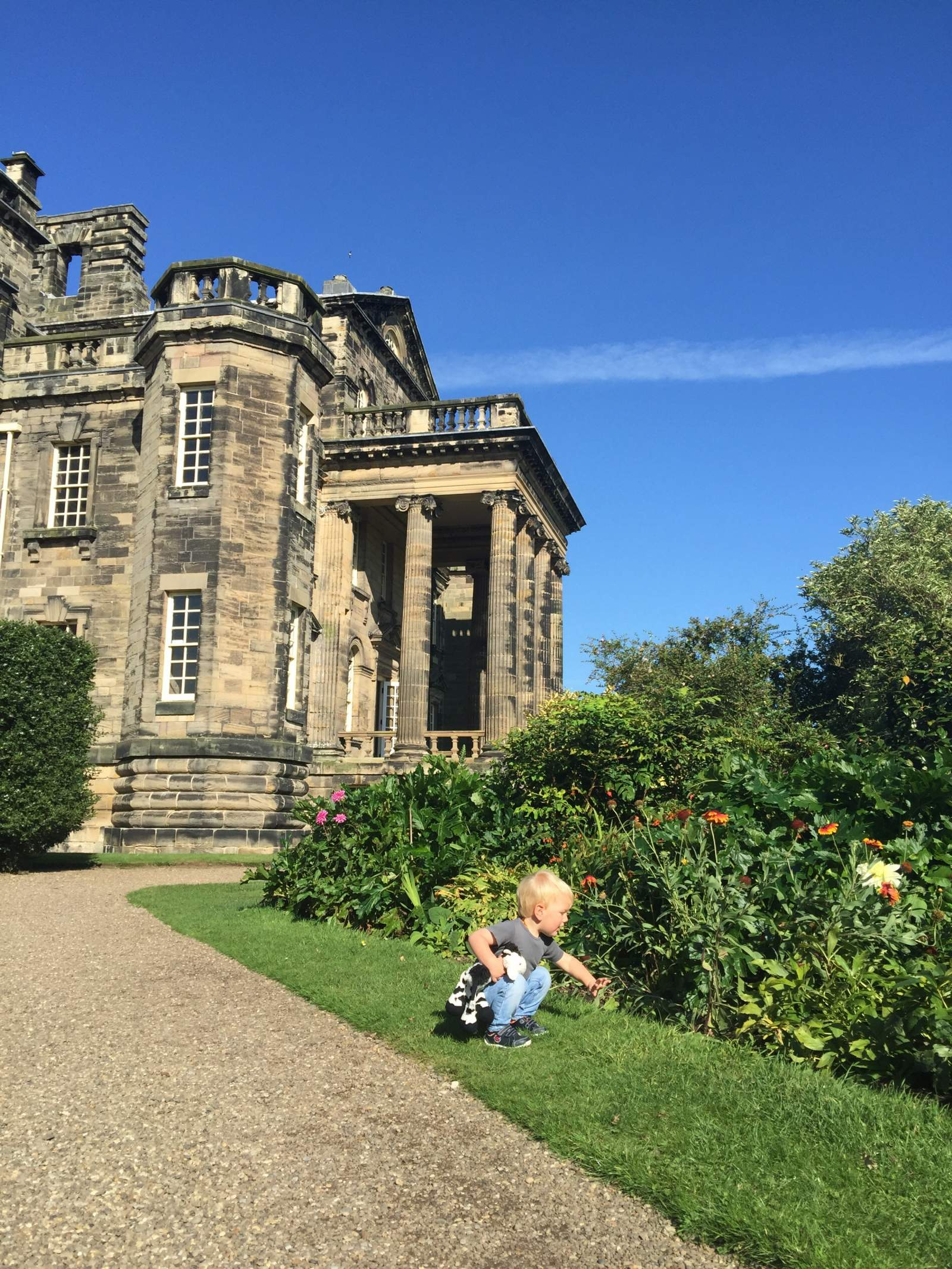 toddler looking at flowers during a sunny day out  at seaton delaval hall