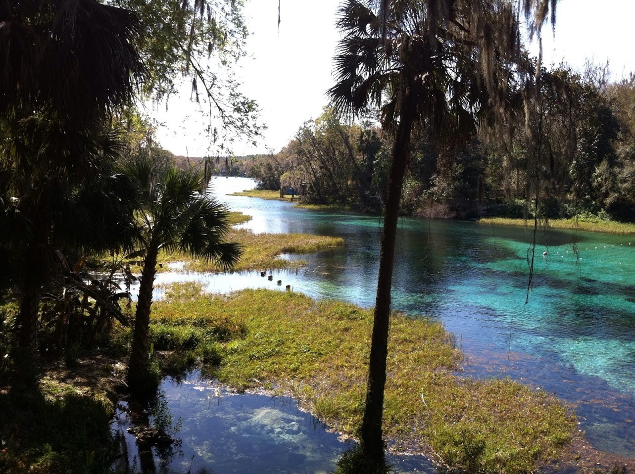 rainbow springs florida with a baby inspiration
