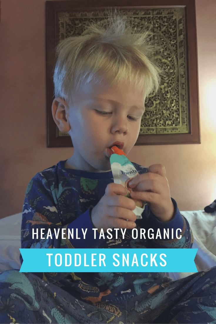 Heavenly Tasty Organic Snacks – review