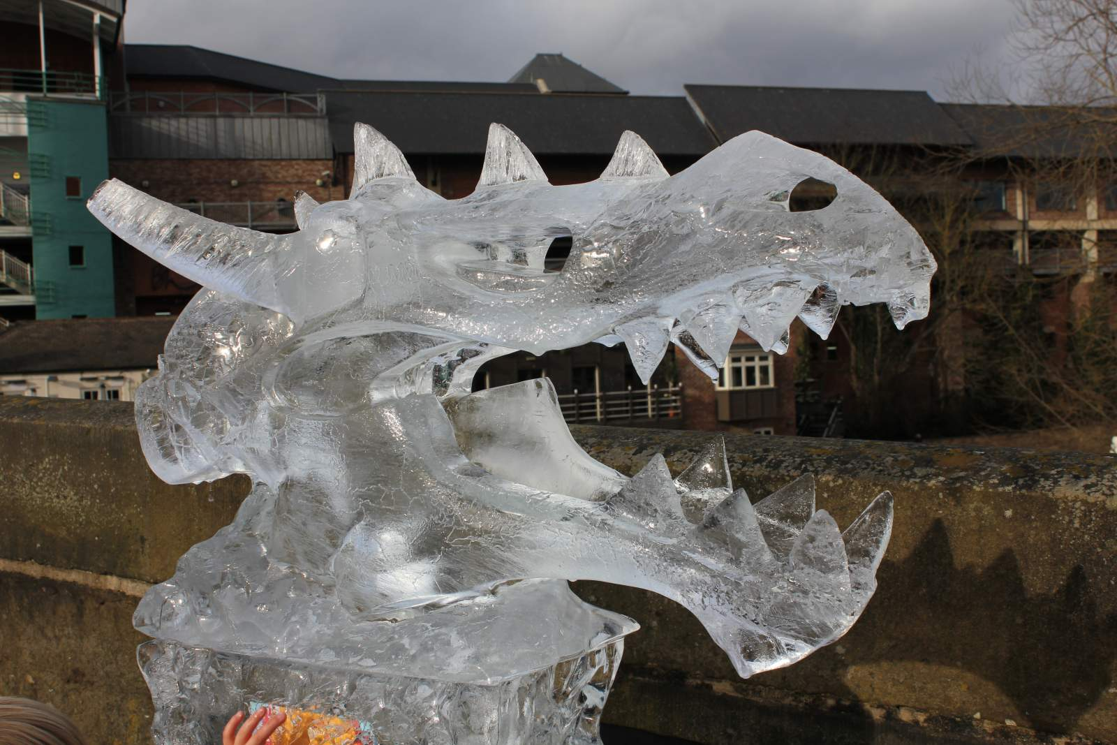 dragon head ice sculpture durham fire and ice 2017