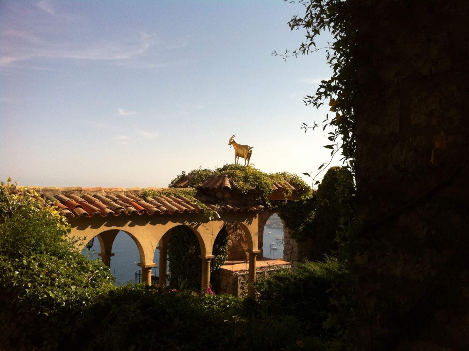 golden goat on the rooftop at eze, medieval village of art and gastronomy in France