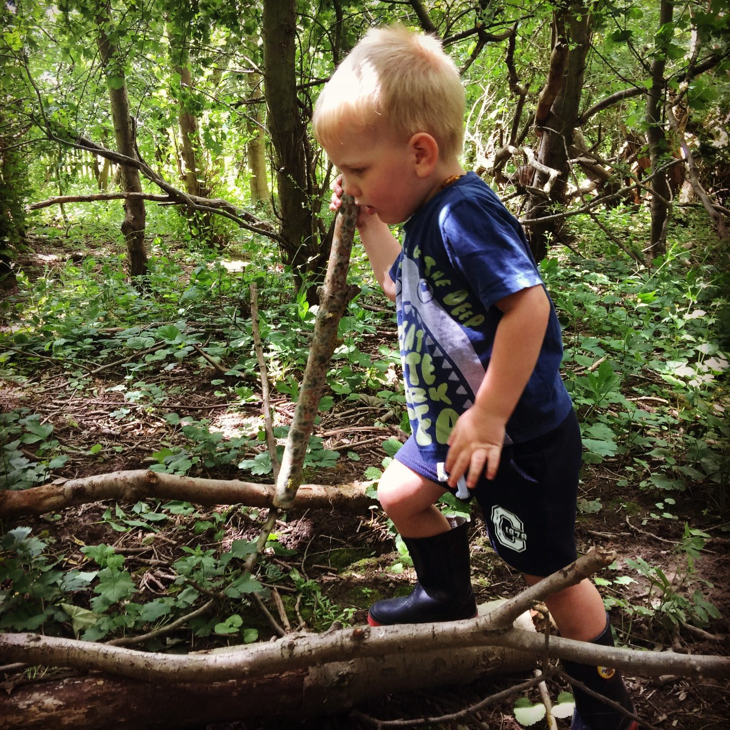 Footprints on the Moon – Forest School in Bedlington, Northumberland – Review