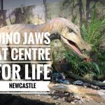 dino jaws centre for life newcastle