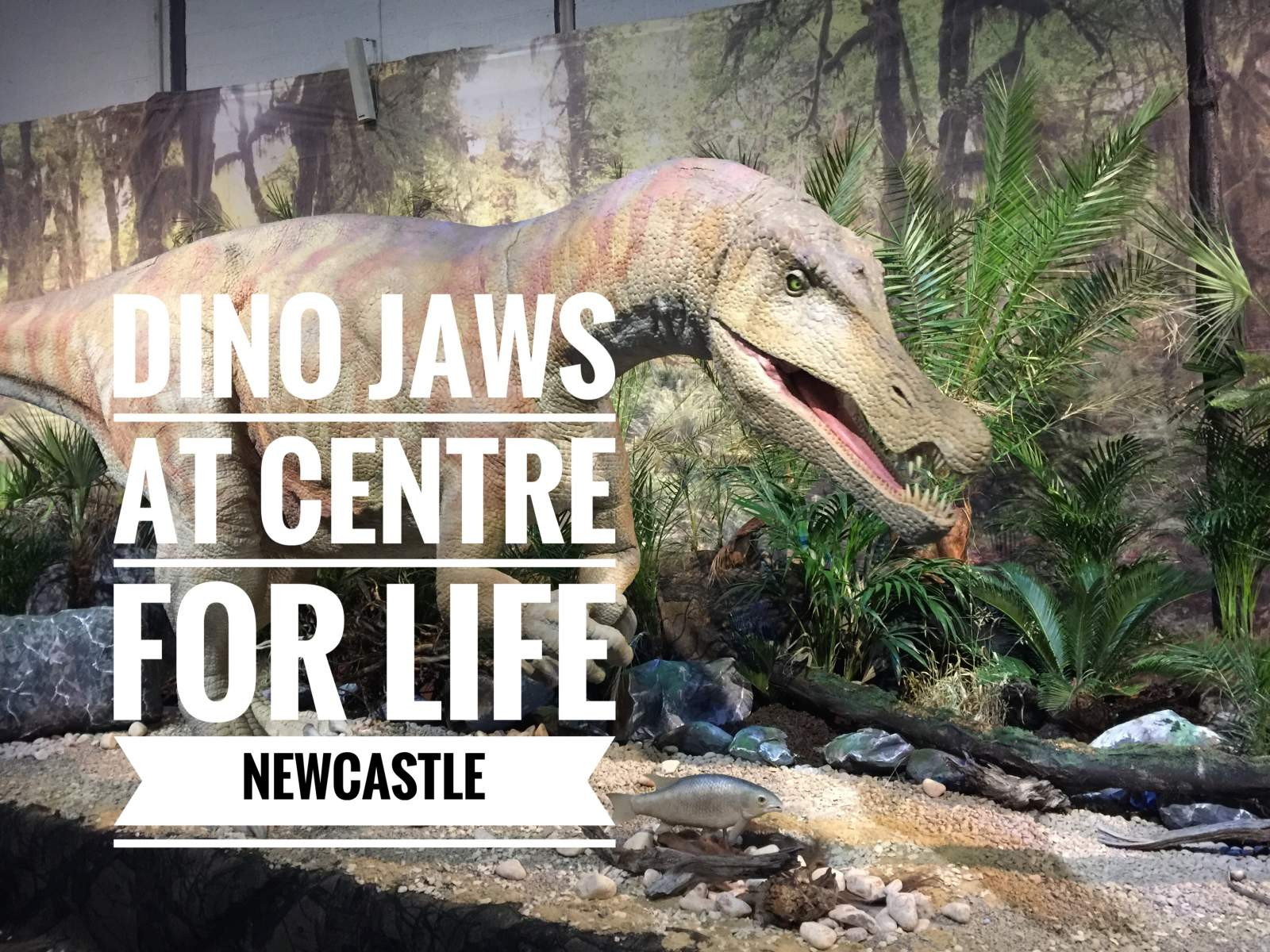 Dino Jaws at Centre for Life, Newcastle – review