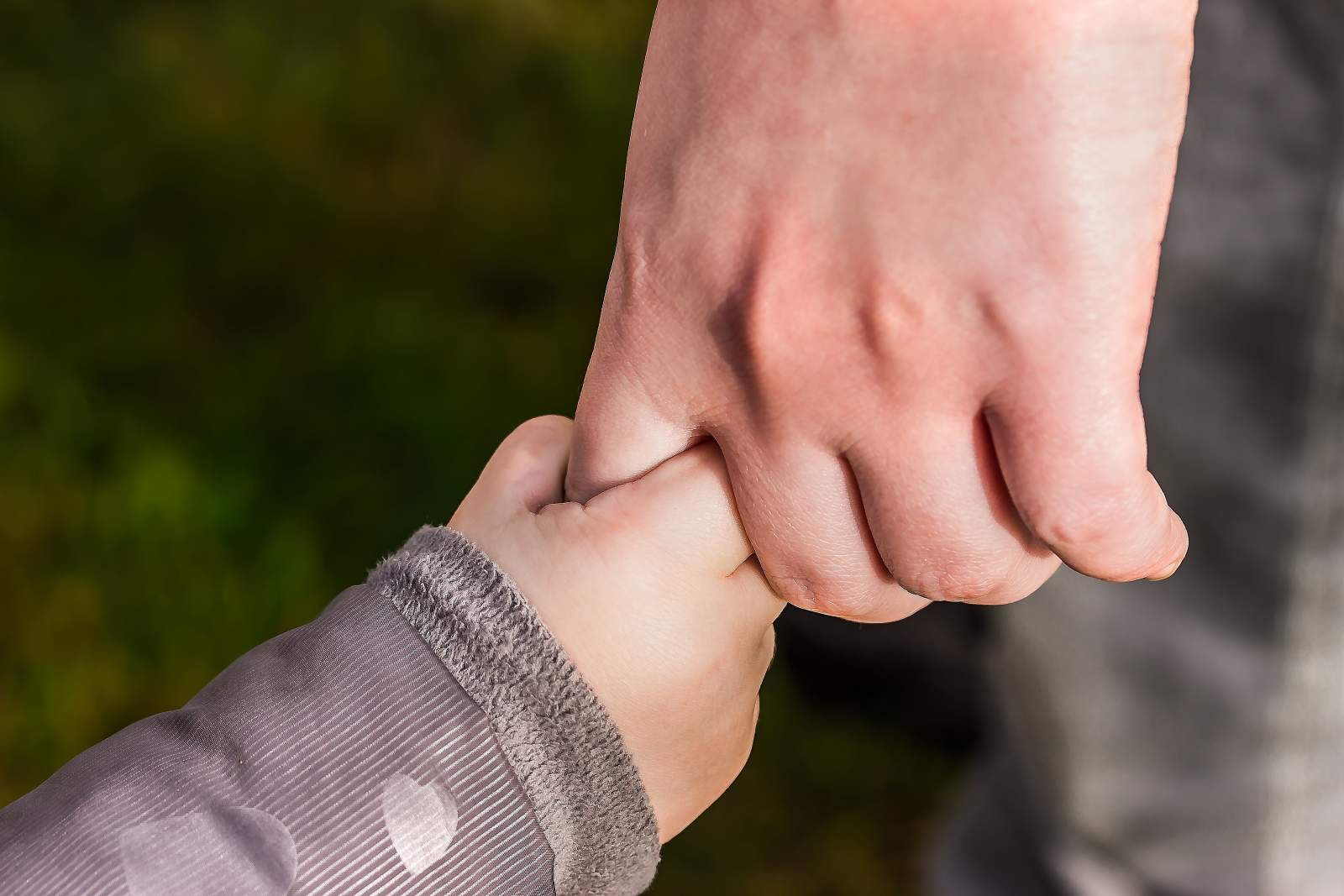 toddler and adult holding hands