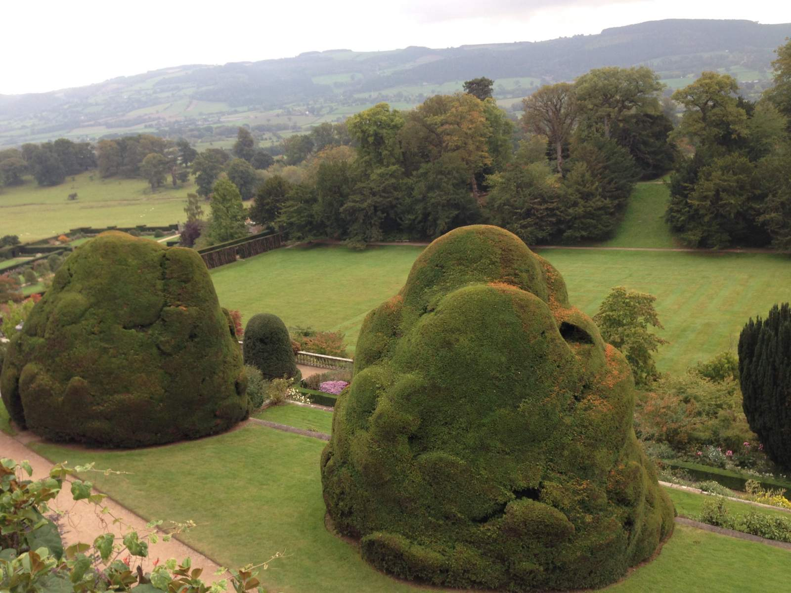 view from the courtyard powis castle