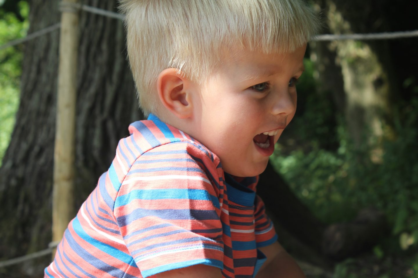 Helping Your Child To Be Happy And Wild [GIVEAWAY]
