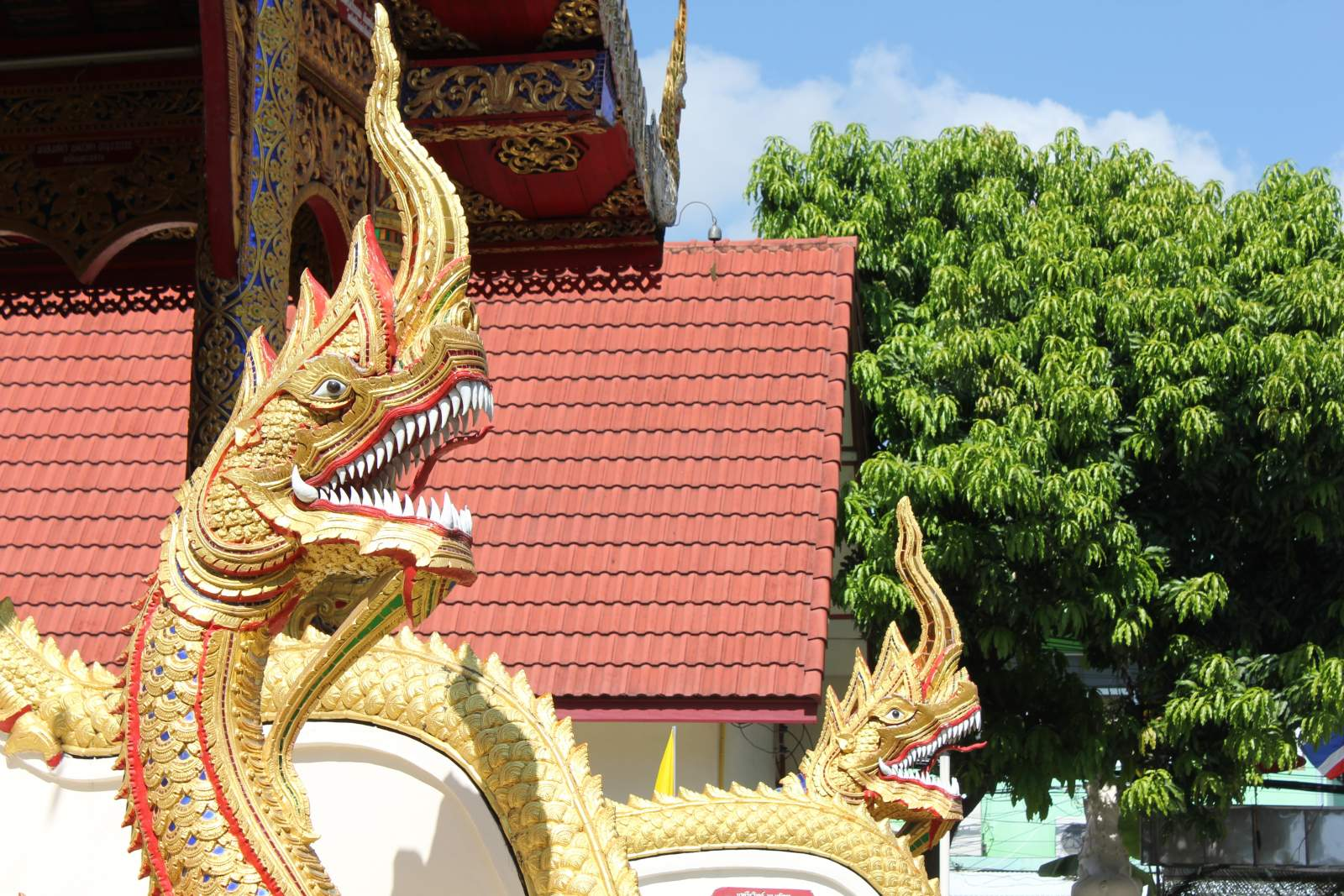 dragon in chiang mai
