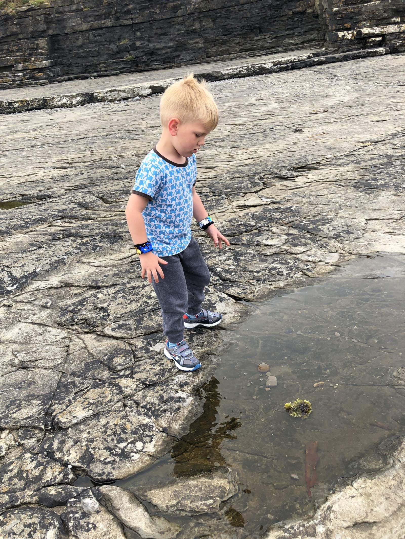 contemplating a dip in a rockpool